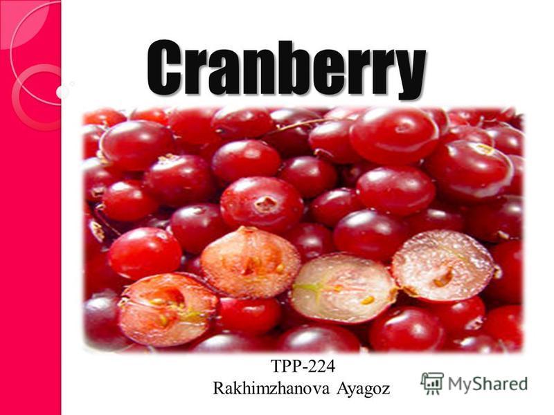 Cranberry TPP-224 Rakhimzhanova Ayagoz