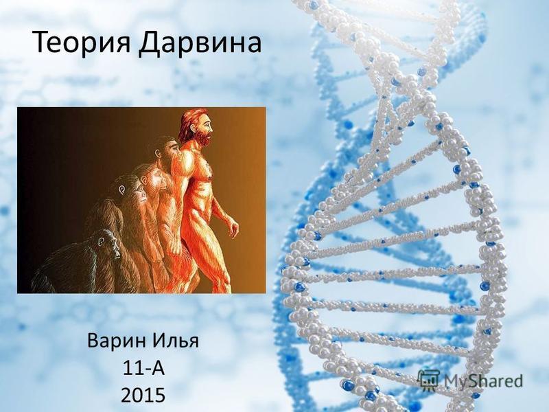 Теория Дарвина Варин Илья 11-А 2015