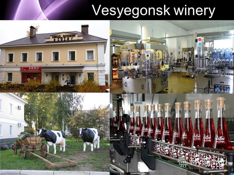 Page 6 Vesyegonsk winery