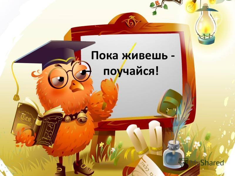 Пока живешь - – поучайся!