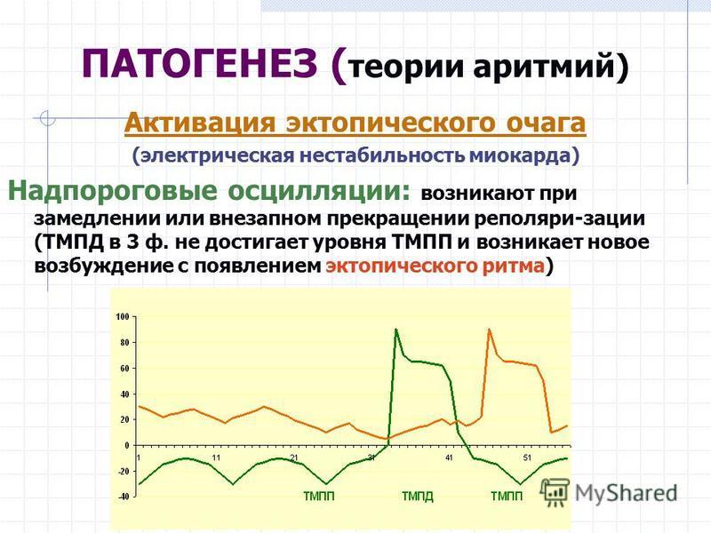 Активация эктопического очага (электрическая нестабильность миокарда) Надпороговые осцилляции: возникают при замедлении или внезапном прекращении реполяри-зации (ТМПД в 3 ф. не достигает уровня ТМПП и возникает новое возбуждение с появлением эктопиче