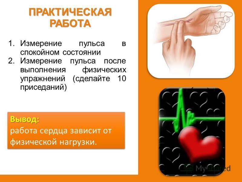 1. Измерение пульса в спокойном состоянии 2. Измерение пульса после выполнения физических упражнений (сделайте 10 приседаний) ПРАКТИЧЕСКАЯ РАБОТА Вывод: работа сердца зависит от физической нагрузки.Вывод: