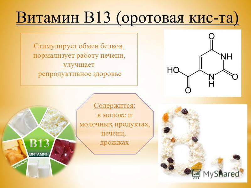 Стимулирует обмен белков, нормализует работу печени, улучшает репродуктивное здоровье Содержится: в молоке и молочных продуктах, печени, дрожжах Витамин В13 (оротовая кис-та)