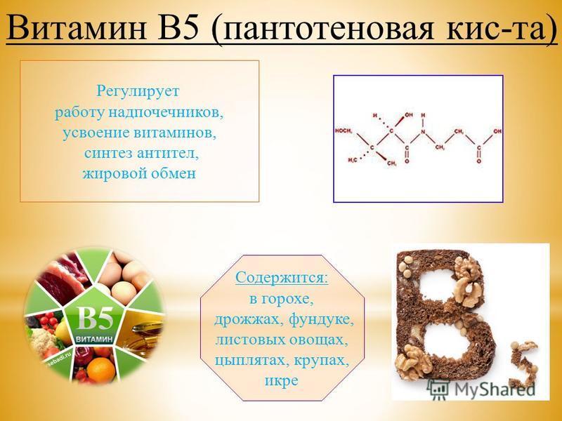 Регулирует работу надпочечников, усвоение витаминов, синтез антител, жировой обмен Содержится: в горохе, дрожжах, фундуке, листовых овощах, цыплятах, крупах, икре Витамин В5 (пантотеновая кис-та)