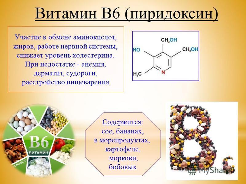 Участие в обмене аминокислот, жиров, работе нервной системы, снижает уровень холестерина. При недостатке - анемия, дерматит, судороги, расстройство пищеварения Содержится: сое, бананах, в морепродуктах, картофеле, моркови, бобовых Витамин В6 (пиридок