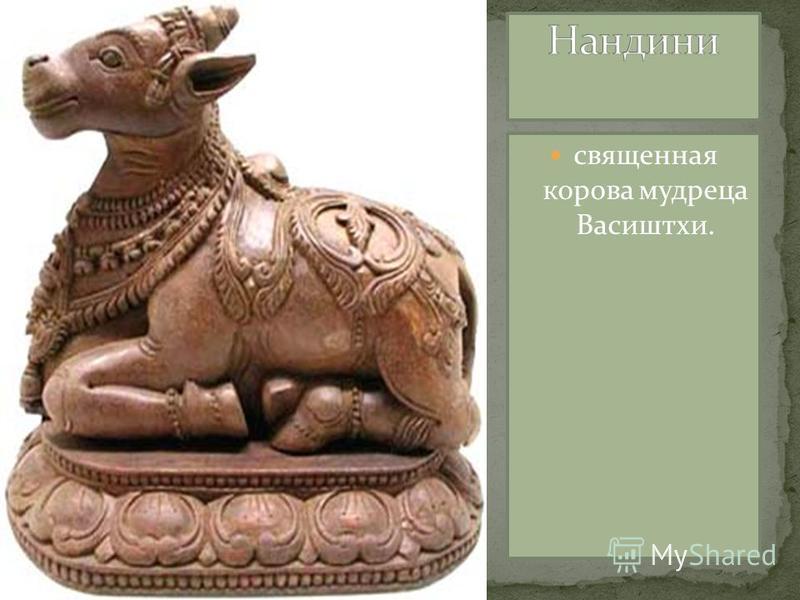 священная корова мудреца Васиштхи.
