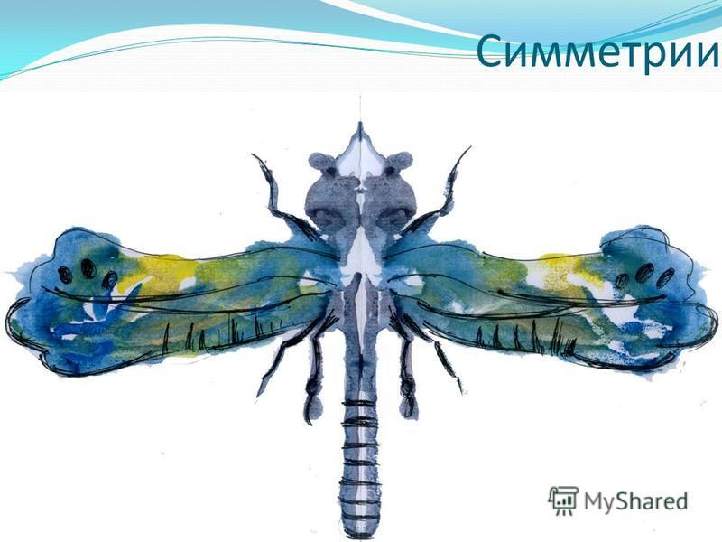 Симметрии