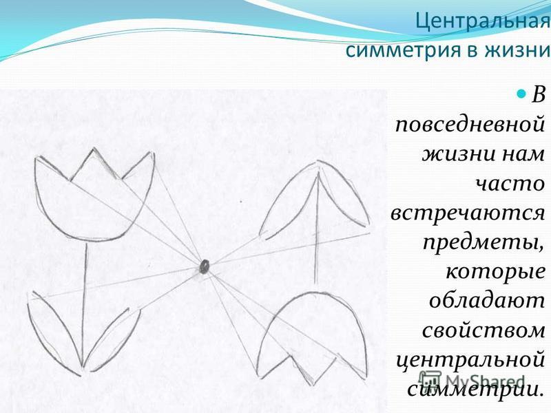 Центральная симметрия в жизни В повседневной жизни нам часто встречаются предметы, которые обладают свойством центральной симметрии.