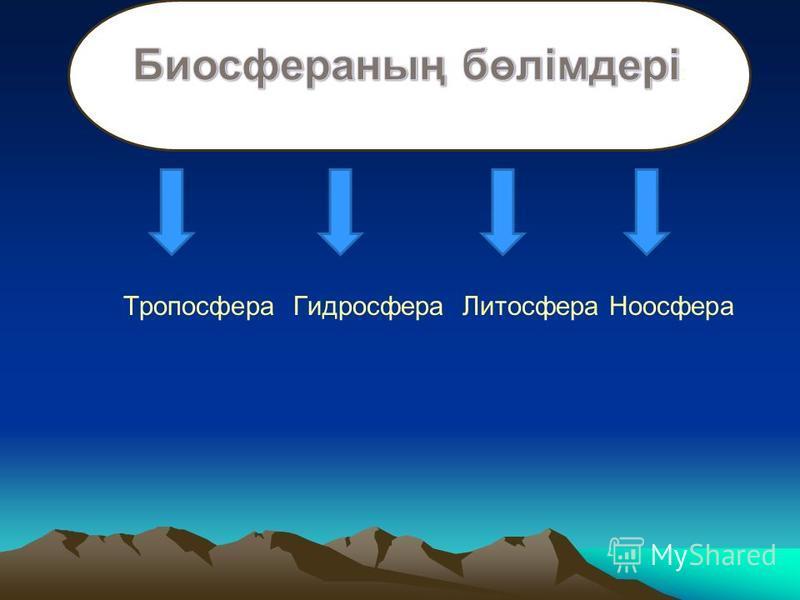 Биосфераның бөлімдері: Тропосфера Гидросфера Литосфера Ноосфера