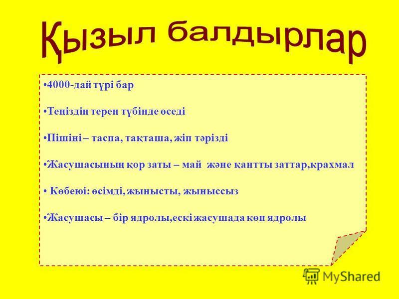 ЛАМИНАРИЯ САРГАССУМ НЕРЕОЦИСТИС АГАРУМ, АЛЯРИЯ
