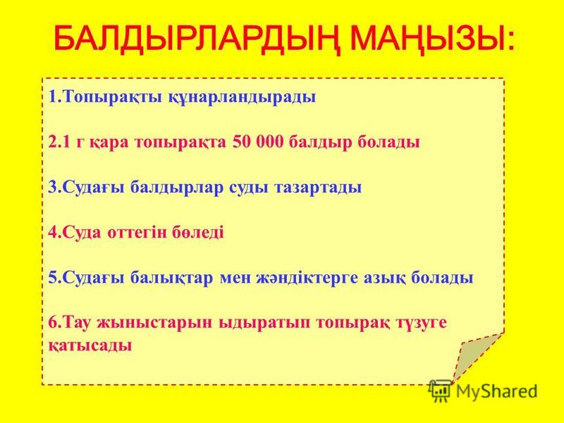 ХОНДРУСКОРАЛИНА ГРИНЕЛЛИЯ ПЛЮМАРИЯ ПОРФИРА