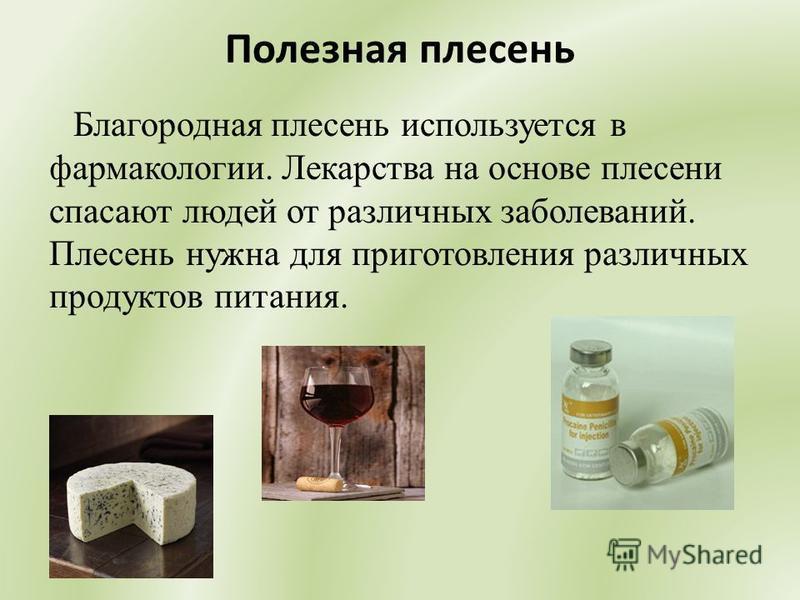 Полезная плесень Благородная плесень используется в фармакологии. Лекарства на основе плесени спасают людей от различных заболеваний. Плесень нужна для приготовления различных продуктов питания.