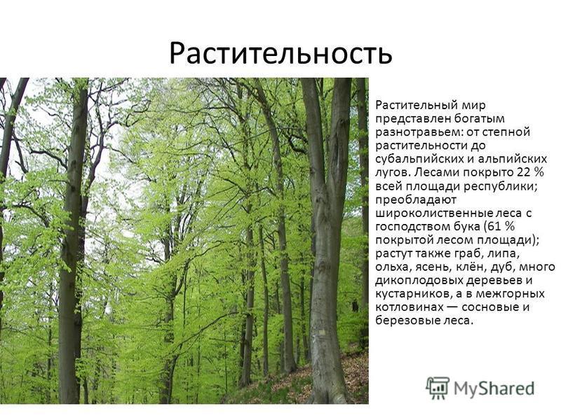 Растительность Растительный мир представлен богатым разнотравьем: от степной растительности до субальпийских и альпийских лугов. Лесами покрыто 22 % всей площади республики; преобладают широколиственные леса с господством бука (61 % покрытой лесом пл