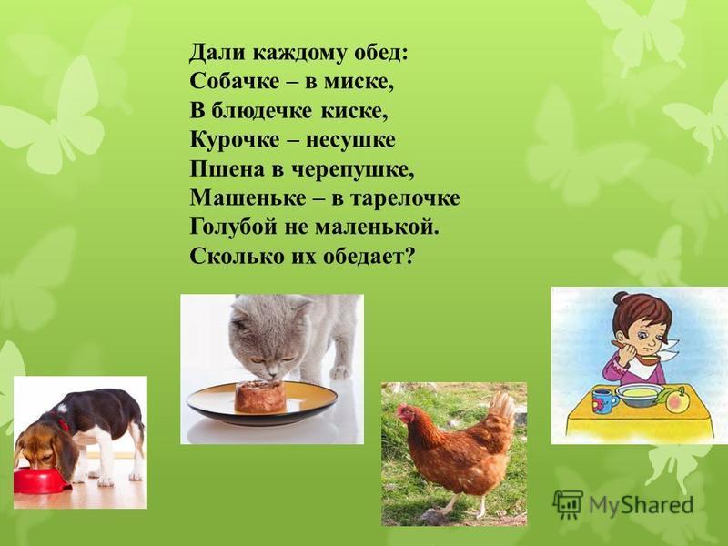Дали каждому обед: Собачке – в миске, В блюдечке киске, Курочке – несушке Пшена в черепушке, Машеньке – в тарелочке Голубой не маленькой. Сколько их обедает?
