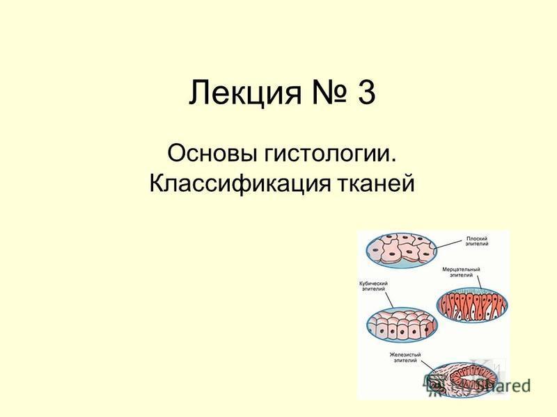Лекция 3 Основы гистологии. Классификация тканей