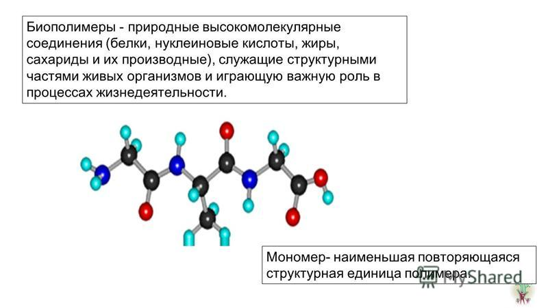 Биополимеры - природные высокомолекулярные соединения (белки, нуклеиновые кислоты, жиры, сахариды и их производные), служащие структурными частями живых организмов и играющую важную роль в процессах жизнедеятельности. Мономер- наименьшая повторяющаяс