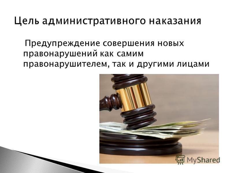 Предупреждение совершения новых правонарушений как самим правонарушителем, так и другими лицами