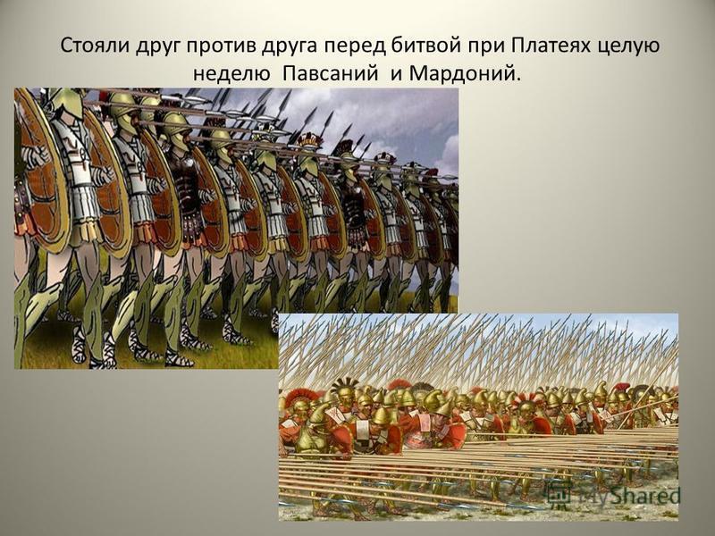 Стояли друг против друга перед битвой при Платеях целую неделю Павсаний и Мардоний.