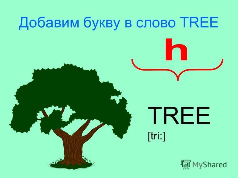 Добавим букву в слово TREE TREE [tri:]