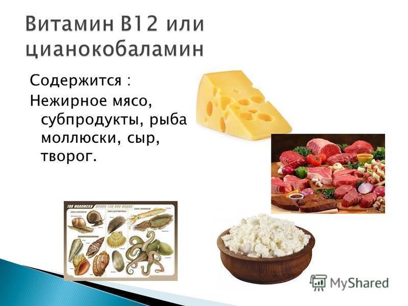 Содержится : Нежирное мясо, субпродукты, рыба, моллюски, сыр, творог.