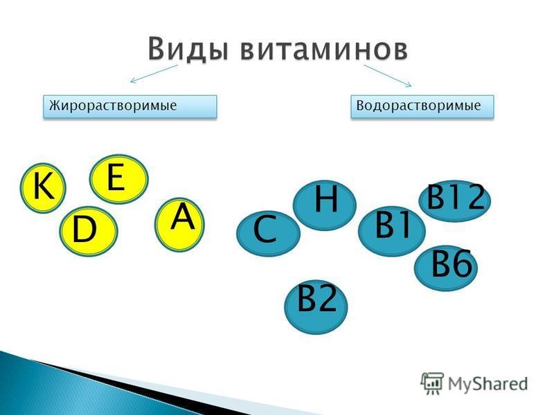 Жирорастворимые Водорастворимые H C B1 B2 B12 B6 A K E D