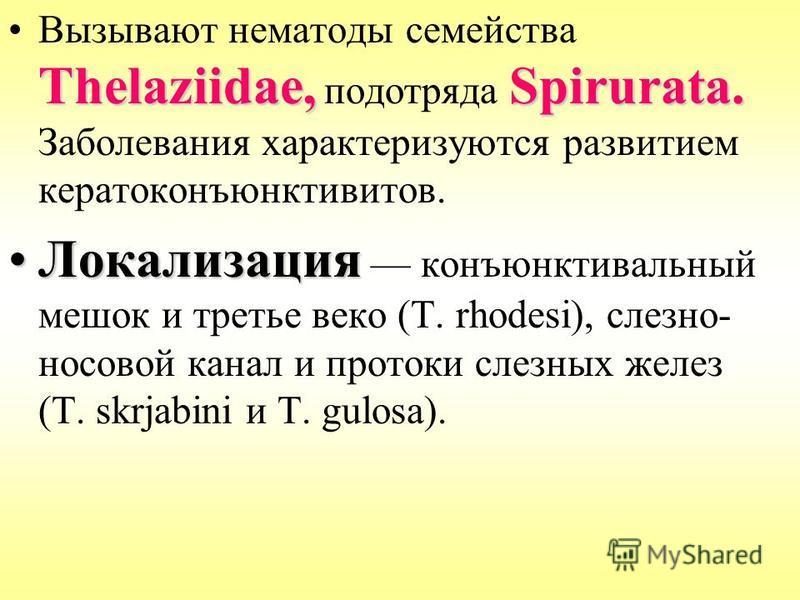 Thelaziidae,Spirurata.Вызывают нематоды семейства Thelaziidae, подотряда Spirurata. Заболевания характеризуются развитием кератоконъюнктивитов. Локализация Локализация конъюнктивальный мешок и третье веко (Т. rhodesi), слезно- носовой канал и протоки