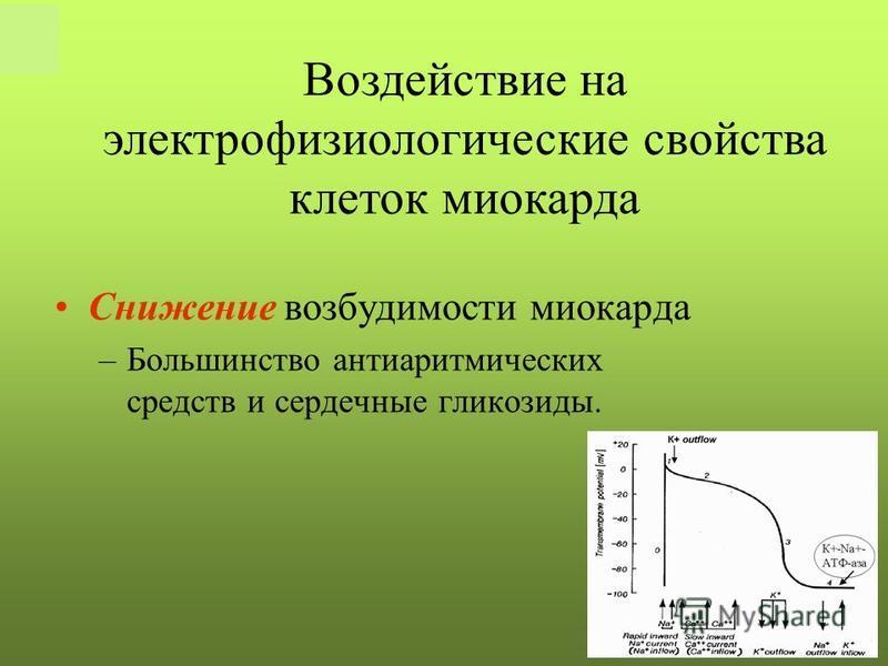РКНПК Москва Снижение возбудимости миокарда –Большинство антиаритмических средств и сердечные гликозиды. Воздействие на электрофизиологические свойства клеток миокарда