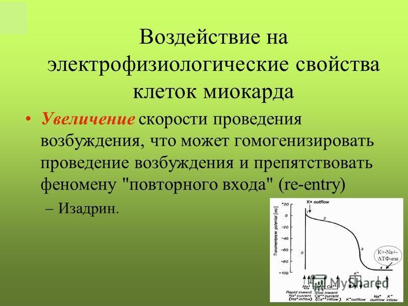 РКНПК Москва Увеличение скорости проведения возбуждения, что может гомогенизировать проведение возбуждения и препятствовать феномену повторного входа (re-entry) –Изадрин. Воздействие на электрофизиологические свойства клеток миокарда