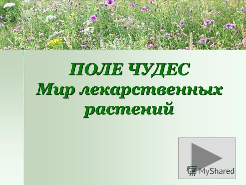 ПОЛЕ ЧУДЕС Мир лекарственных растений