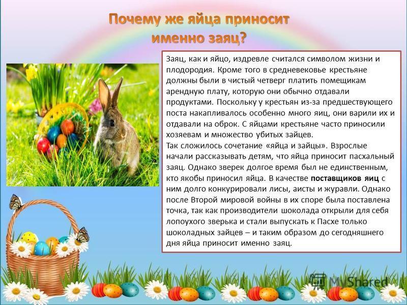 Заяц, как и яйцо, издревле считался символом жизни и плодородия. Кроме того в средневековье крестьяне должны были в чистый четверг платить помещикам арендную плату, которую они обычно отдавали продуктами. Поскольку у крестьян из-за предшествующего по