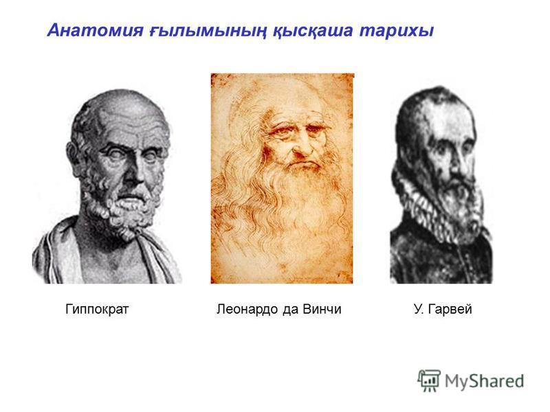 ГиппократЛеонардо да ВинчиУ. Гарвей Анатомия ғылымының қысқаша тарихы