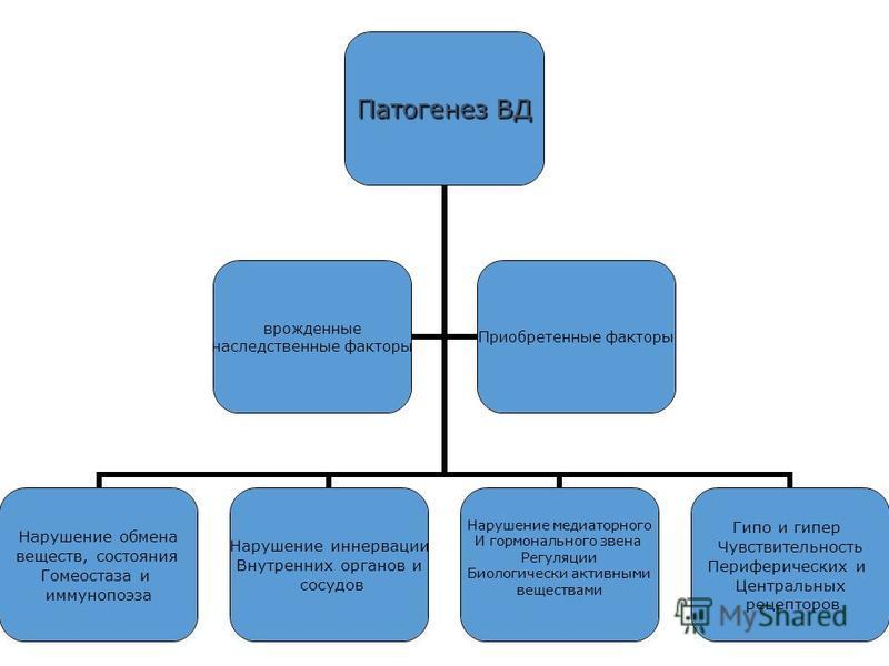 Патогенез ВД Нарушение обмена веществ, состояния Гомеостаза и иммунопоэза Нарушение иннервации Внутренних органов и сосудов Нарушение медиаторного И гормонального звена Регуляции Биологически активными веществами Гипо и гипер Чувствительность Перифер