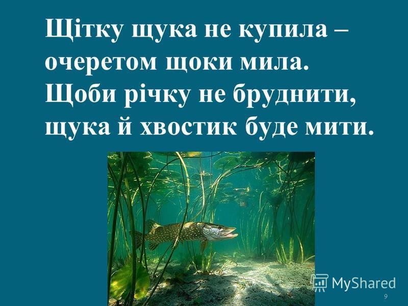 9 Щітку щука не купила – очеретом щоки мила. Щоби річку не бруднити, щука й хвостик буде мити.