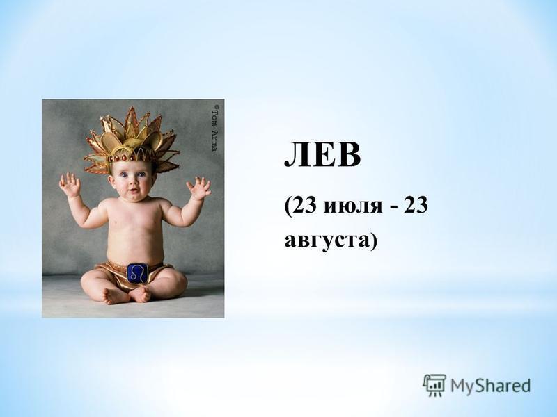 ЛЕВ (23 июля - 23 августа )