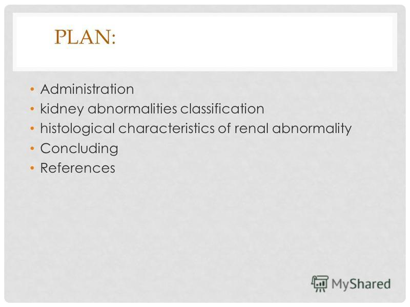 PLAN: Administration kidney abnormalities classification histological characteristics of renal abnormality Concluding References