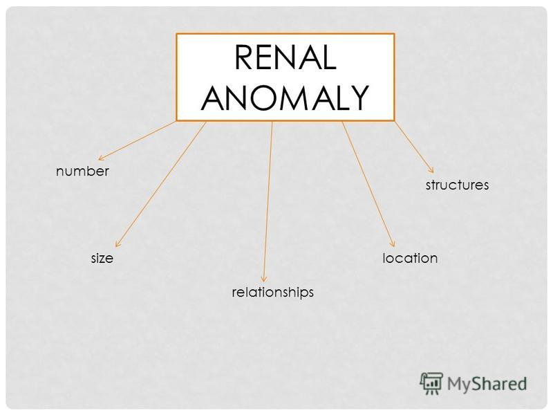 RENAL ANOMALY number sizelocation relationships structures