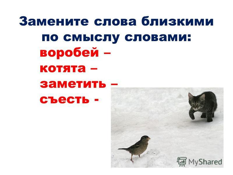 Замените слова близкими по смыслу словами: воробей – котята – заметить – съесть -