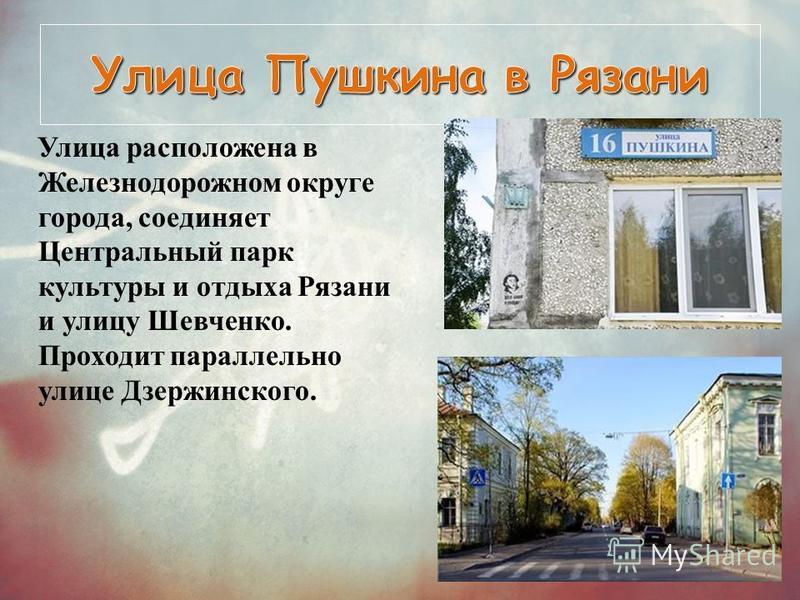 Улица расположена в Железнодорожном округе города, соединяет Центральный парк культуры и отдыха Рязани и улицу Шевченко. Проходит параллельно улице Дзержинского.