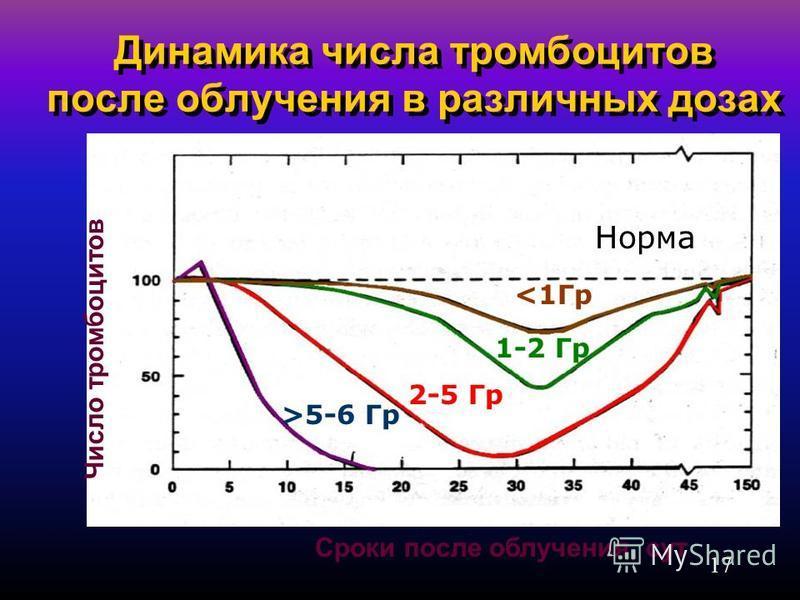 17 Динамика числа тромбоцитов после облучения в различных дозах Сроки после облучения, сут Норма <1Гр 1-2 Гр 2-5 Гр >5-6 Гр Число тромбоцитов