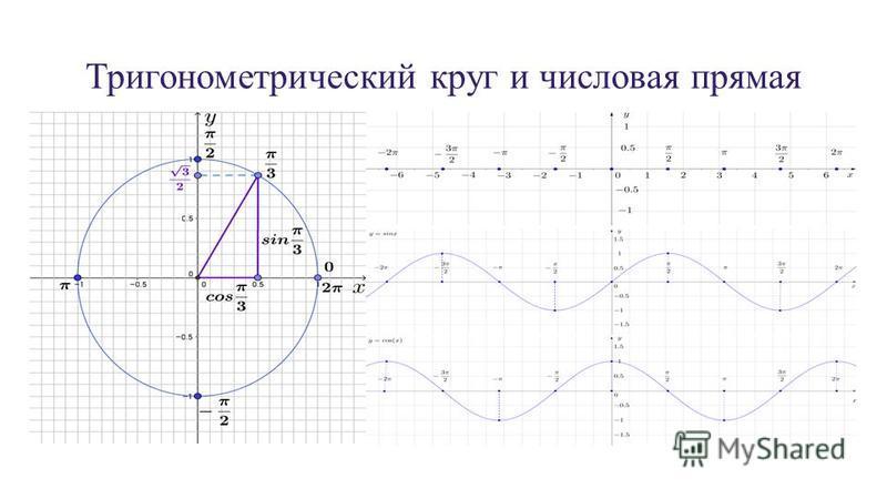 Тригонометрический круг и числовая прямая