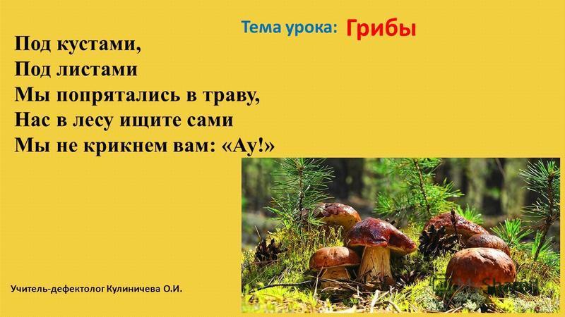 Под кустами, Под листами Мы попрятались в траву, Нас в лесу ищите сами Мы не крикнем вам: «Ау!» Тема урока: Грибы Учитель-дефектолог Кулиничева О.И.