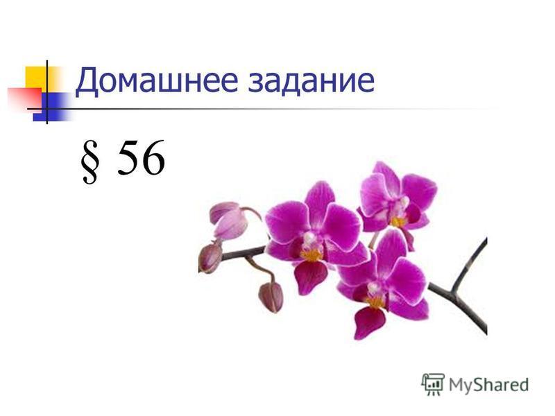 Верю – не верю 1. Семейство Бобовые насчитывает более 18 тыс. видов 2. Цветки с двойным околоцветником 3. Формула цветка: Ч5Л1+2+(2) Т9+1ПП1 4. У клевера - простой лист 5. У люпина – соцветие сложная кисть 6. У клевера – соцветие простой зонтик 7. Ак