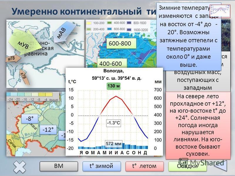 Умеренно континентальный тип климата ВМ t° зимой t° летом Осадки Восточно- Европейская равнина мАВ мУВ Климат формируется под воздействием воздушных масс, поступающих с западным переносом со стороны Атлантического океана. Они делают климат мягче и те