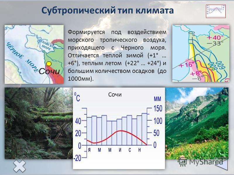 Субтропический тип климата Формируется под воздействием морского тропического воздуха, приходящего с Черного моря. Отличается теплой зимой (+1° … +6°), теплым летом (+22° … +24°) и большим количеством осадков (до 1000 мм). Сочи
