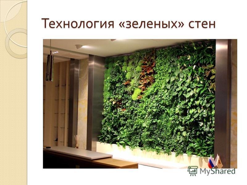 Технология « зеленых » стен