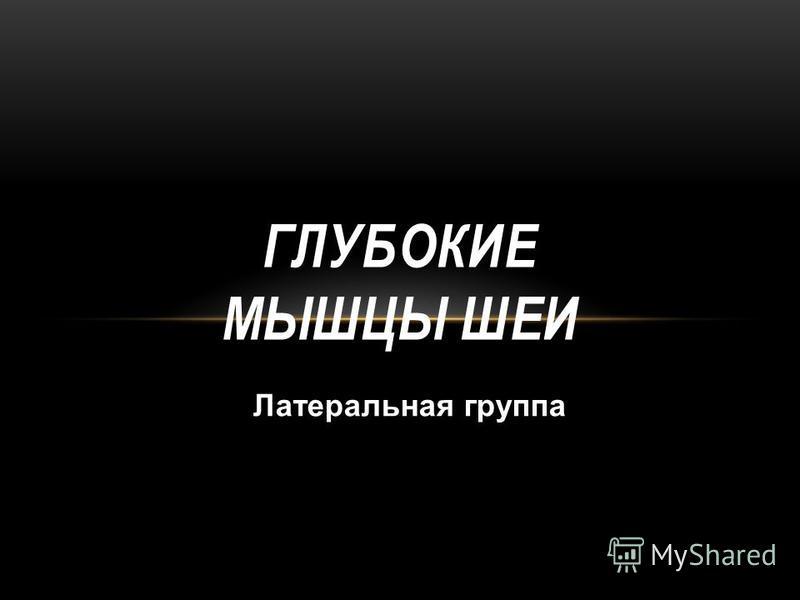 ГЛУБОКИЕ МЫШЦЫ ШЕИ Латеральная группа