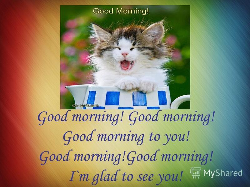 Good morning! Good morning to you! Good morning!Good morning! I`m glad to see you!
