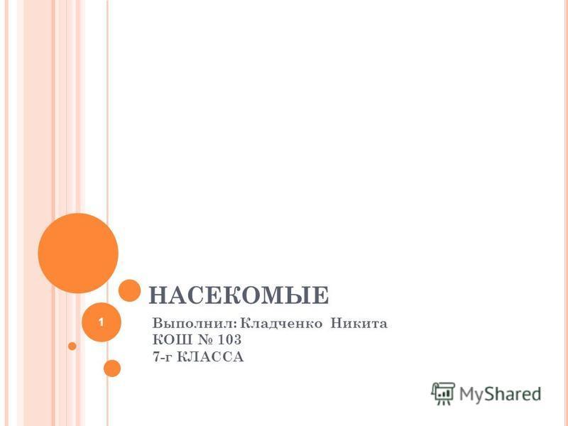НАСЕКОМЫЕ Выполнил: Кладченко Никита КОШ 103 7-г КЛАССА 1