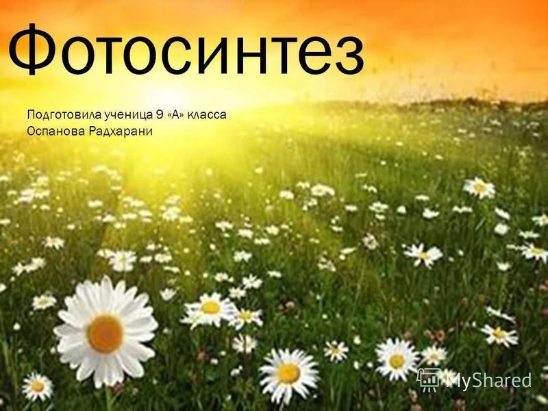 Фотосинтез Подготовила ученица 9 «А» класса Оспанова Радхарани