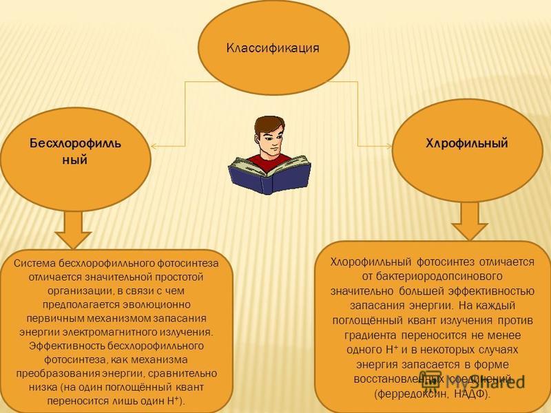 Классификация Бесхлорофилль ный Система бесхлорофилльного фотосинтеза отличается значительной простотой организации, в связи с чем предполагается эволюционно первичным механизмом запасания энергии электромагнитного излучения. Эффективность бесхлорофи